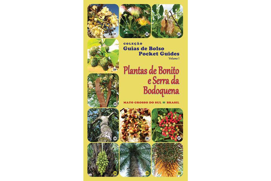 ddg_pin_capa_guia_plantas_pin_bion_NAI